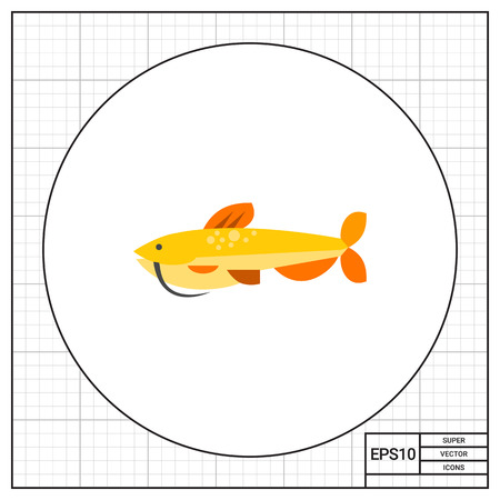 zoology: Isolated catfish. Catch, water, wildlife. Fish concept. Can be used for topics like fishing, zoology, cooking. Illustration
