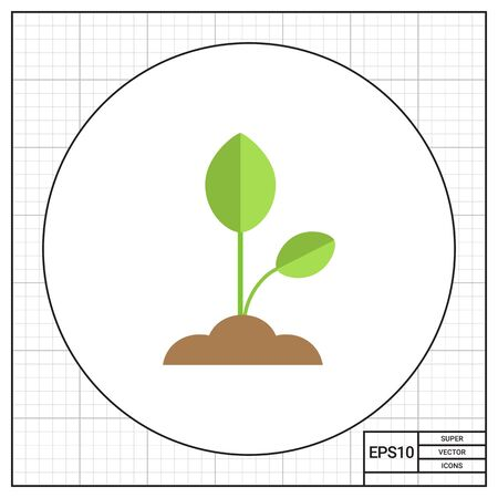 Vector icon of growing green sprout with leaves Illustration