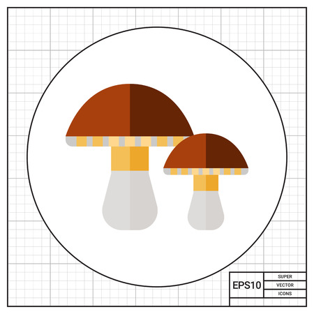 edible mushroom: Two porcini mushrooms. Edible, delicious, forest. Mushroom concept. Can be used for topics like forestry, cooking, biology, agriculture.