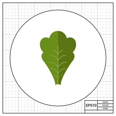 leaf lettuce: Multicolored vector icon of green fresh lettuce leaf Illustration