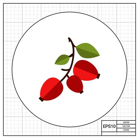 rose hips: Vector icon of ripe dogrose berry bunch