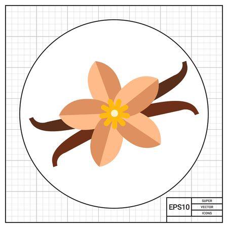 vainilla flor: Palos de vainilla y flor Vectores