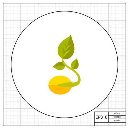 grain: Sprouted grain icon
