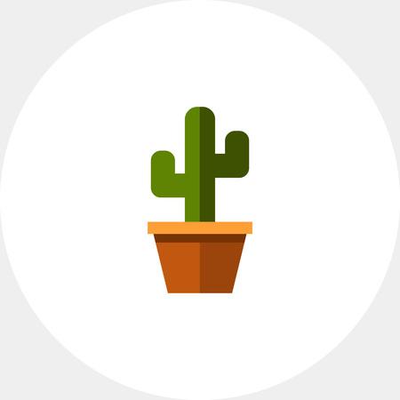 potting soil: Cactus in flower pot3