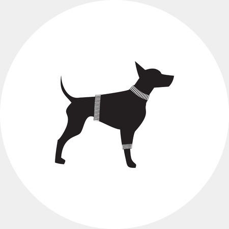 Dog in Sweater Icon