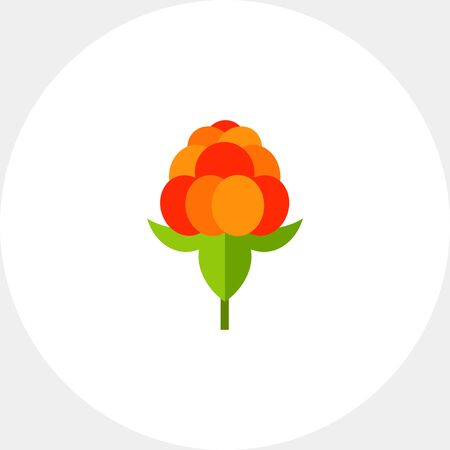 Single Cloudberry with Leaves Icon