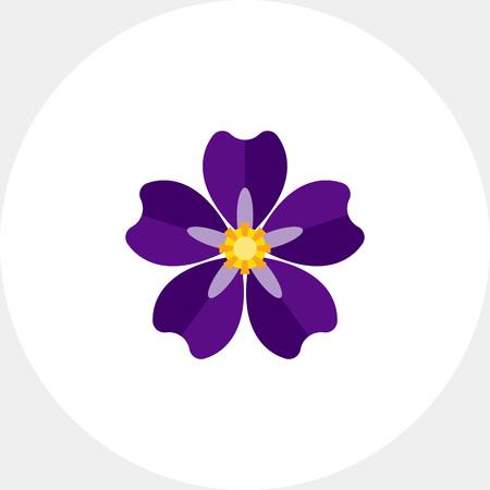 armenian: Armenian forget-me-not icon