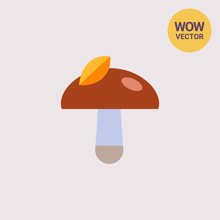 Mushroom with leaf on cap