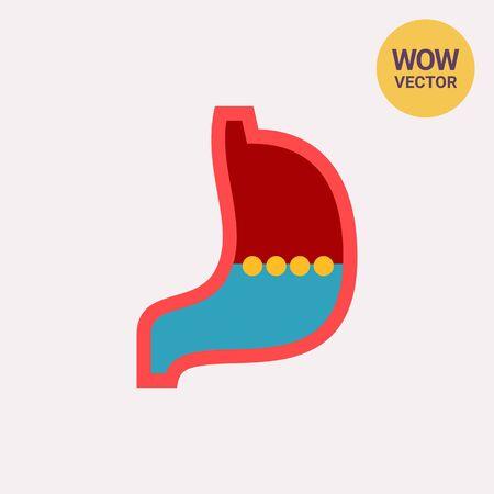 Stomach Vector Icon Illustration