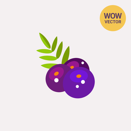 Aсai Berries with Leaves Icon Illustration
