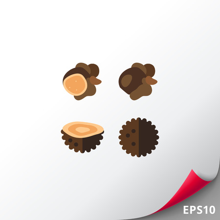 Black Truffles Icon Illustration