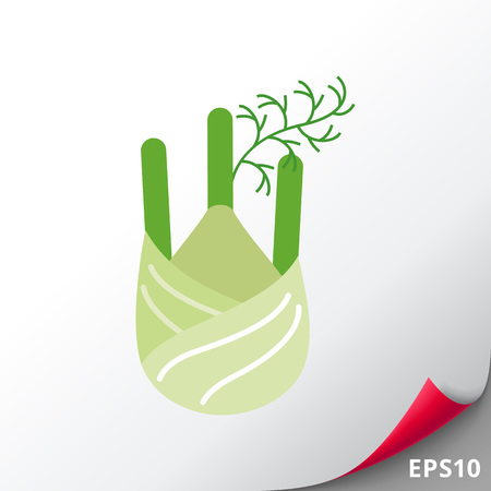 Vector icon of fennel root with stem parts