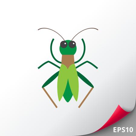 feeler: Green grasshopper icon Illustration