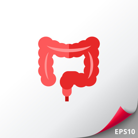 large intestine: Human Intestines Vector Icon