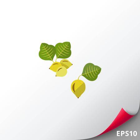 kakadu: Australian kakadu plum vector icon