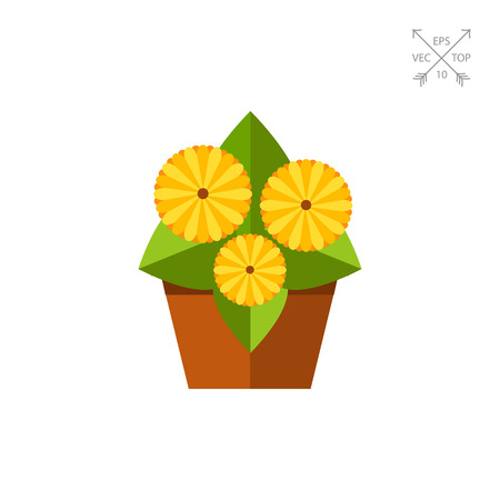 Gerbera Daisy Icon