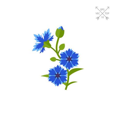 Bleu Bleuet vecteur icône