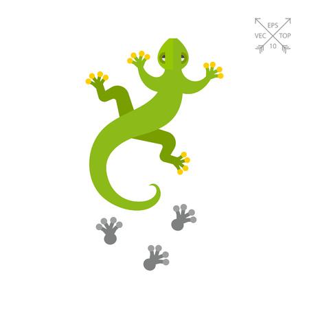 움직이는 도마뱀과 발자국 아이콘