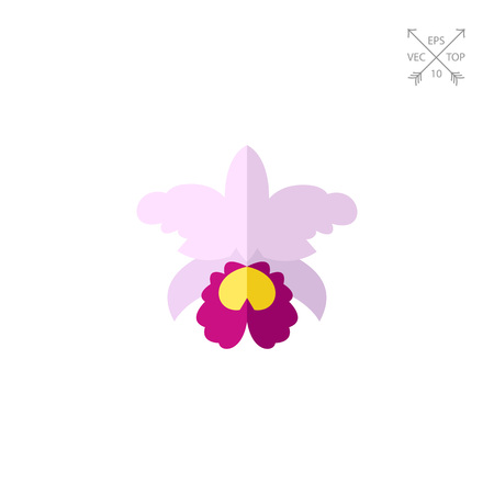 Orchid Cattleya flower icon
