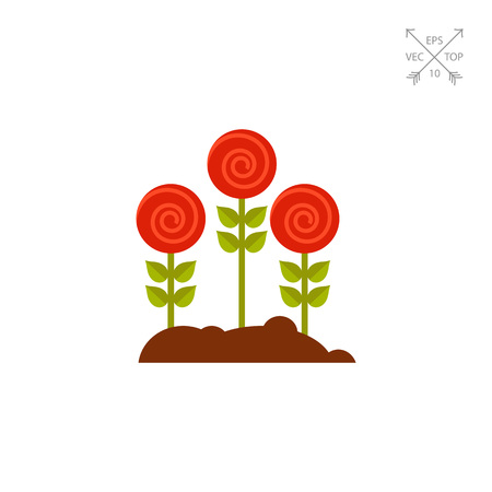 Roses growing in garden icon.
