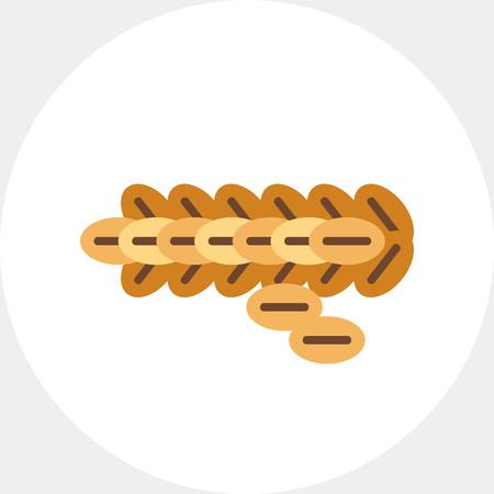 Kopi Luwak vector icon