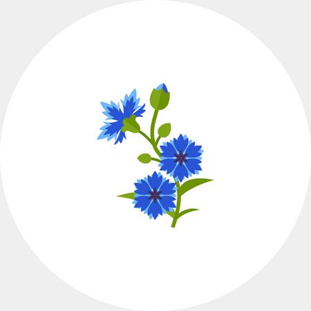 weeds: Blue cornflower vector icon