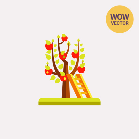 Ladder at tree with ripe red apples. Harvest, orchard, temptation. Gardening concept. Can be used for topics like agriculture, fruit production, botany