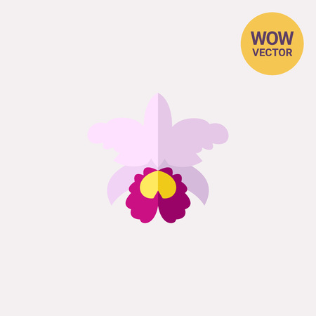 Icon of purple Orchid Cattleya. Beautiful flower, bloom, plant. Botanic garden concept.