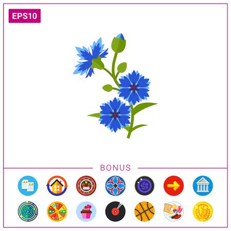 Blue cornflower vector icon