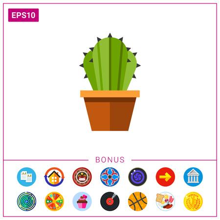 potting soil: Cactus in flower pot