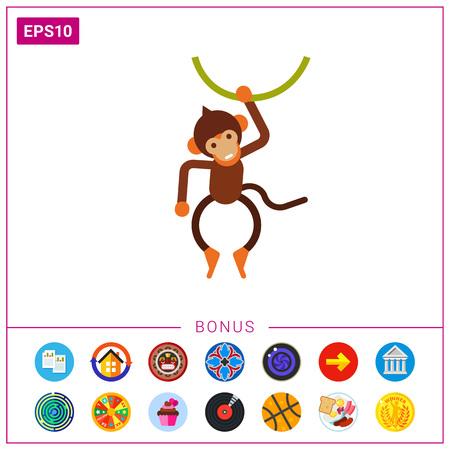 liana: Little monkey hanging on liana