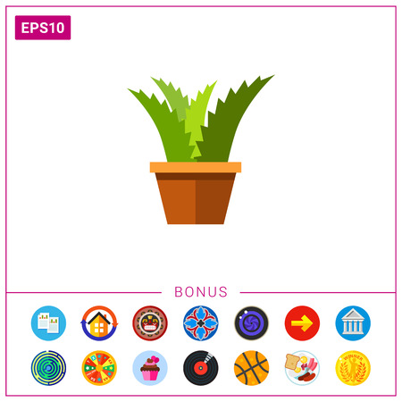 aloe vera plant: Potted flower icon