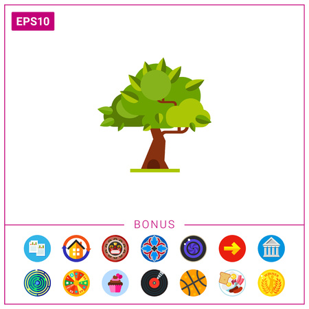 the topics: Summer tree with thick leaves. Plant, wood, nature. Summer tree concept. Can be used for topics like summer, vacation, botany.