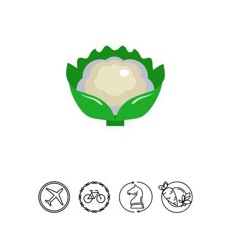 carbohydrate: Cauliflower curd icon