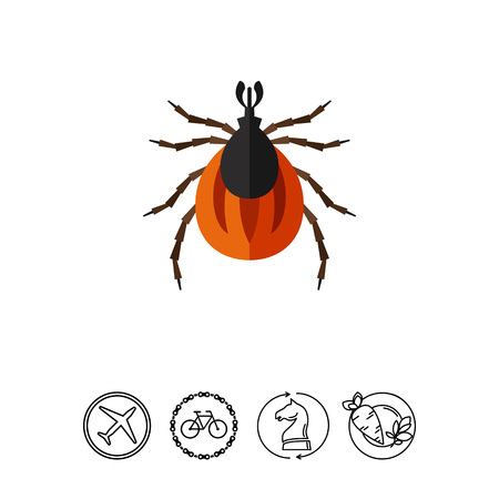 feeler: Multicolored vector icon of brown mite, top view Illustration