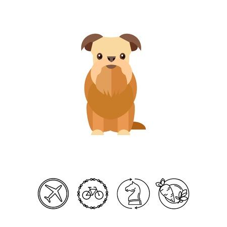 Griffon bruxellois dog icon