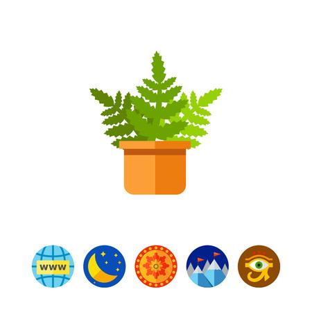 flowerpots: Boston Fern Icon