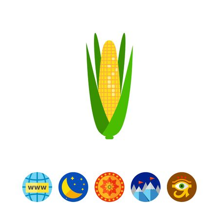 carbohydrate: Multicolored vector icon of corn cob with green leaves