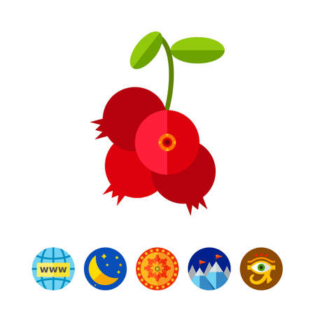 Cowberry Branch with Berries Icon Illustration