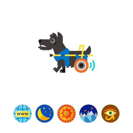 Disabled dog moving with help of prosthesis. Disability, injury, aid. Care of disabled animals concept. Can be used for topics like disability, care, veterinary medicine.