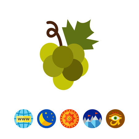 nobody: Green grape bunch icon