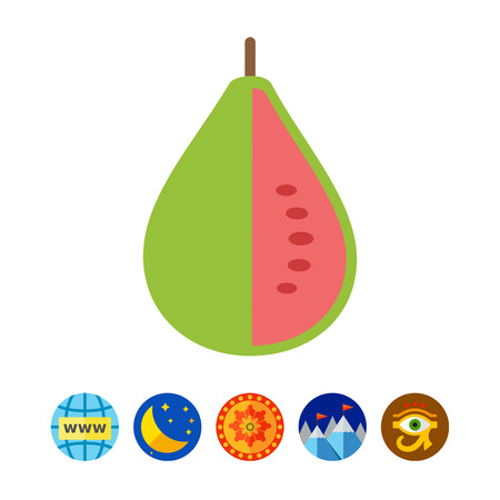 guava fruit: Guava fruit icon Illustration
