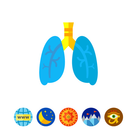 Lungs Vector Icon
