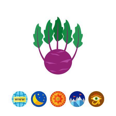 Kohlrabi cabbage icon Ilustracja