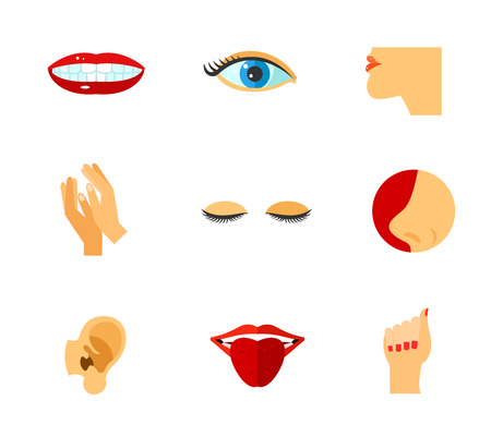 Body parts icon set Banco de Imagens - 80505040