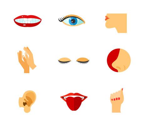 Körperteile Icon Set