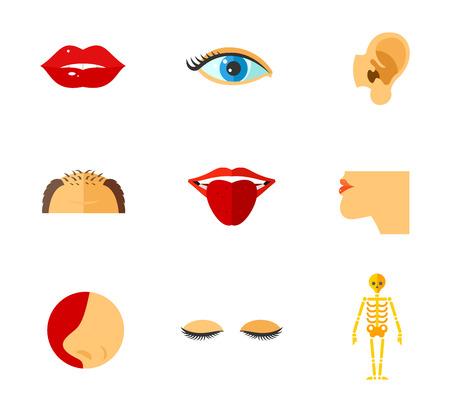 Human face parts icon set
