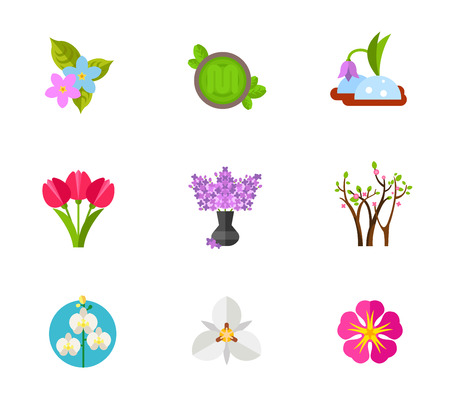 snowdrop: Blooming flower icon set Illustration