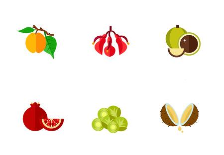 Exotic fruits icon set Illustration