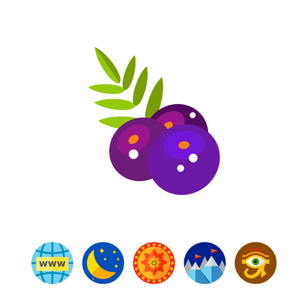 Acai Berries with Leaves Icon